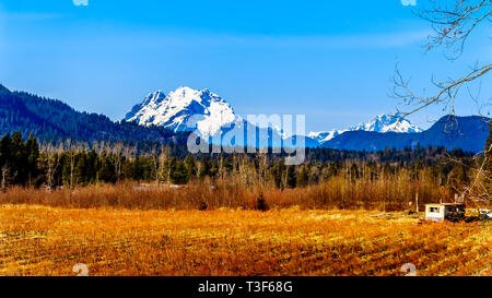 Mount Robie Reid on the left and Mount Judge Howay on the right, viewed from Sylvester Road over the Blueberry Fields near Mission, BC, Canada - Stock Photo