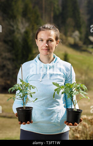 Woman gardener holding her tomato seedlings prepared to be planted on her garden. Organic gardening, healthy food, self-supply and housework concept. - Stock Photo