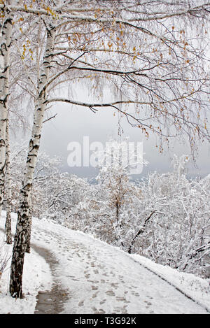 Walk in the winter city park - Stock Photo