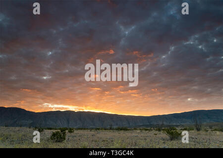 Sky over Mariscal Mountain at sunrise, Chihuahuan Desert borderland,  Talley area, Big Bend National Park, Texas, USA - Stock Photo