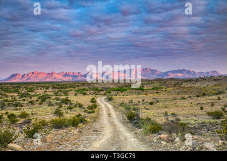 Chisos Mountains at sunrise, view from Talley Road near Mariscal Canyon, Big Bend National Park, Texas, USA - Stock Photo