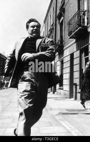 1984 Year: 1956  UK Director: Michael Anderson Edmond O'Brien - Stock Photo