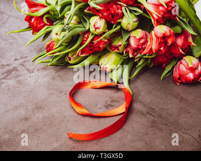 Symbols of memory 9 May, 23 February card concept. Red tulip and red ribbon, copy space, warm colors - Stock Photo