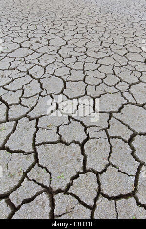 Abstract pattern of dry cracked clay mud in dried up lake bed / riverbed caused by prolonged drought in summer in hot weather temperatures - Stock Photo