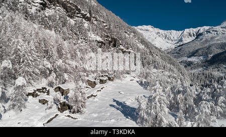 Winter season in the Italian Alps, forest covered with snow - Stock Photo