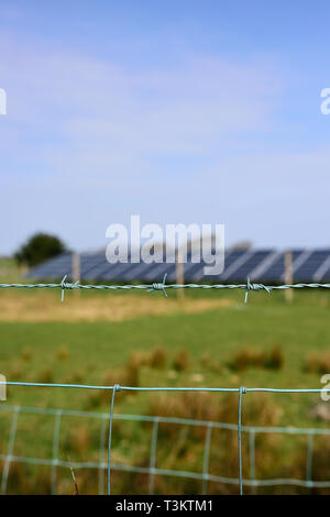 Barbed wire fence in front of out of focus solar array - Stock Photo