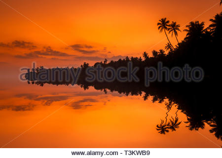 Beautiful sunset on the beach with palms on a Caribbean island - Stock Photo