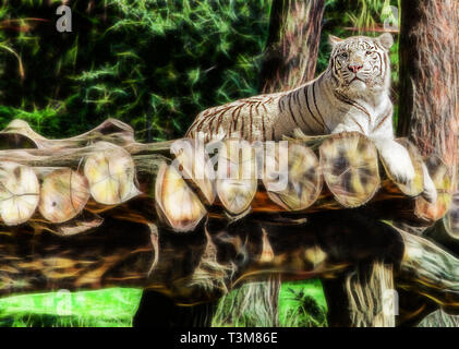 Lying white tiger in the forest - Stock Photo