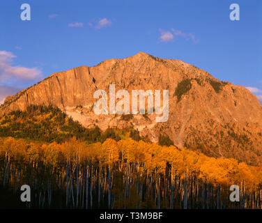 USA, Colorado, Gunnison National Forest, Raggeds Wilderness, Sunset light on Marcellina Mountain and fall colored aspen in the Elk Mountains. - Stock Photo