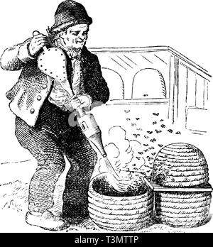 Antique vector drawing or engraving of grunge vintage illustration of beekeeper working with old style hive and smoker.From book Illustrierter Neuester Bienenfreund, printed in Leipzig, Germany 1852. - Stock Photo