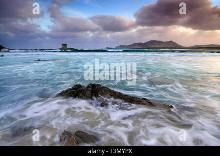 A view at sunrise of the wonderful, tropical-like beach of La Pelosa nearby Stintino in Sardinia, Italy, with the XVI century Genovese watch tower and - Stock Photo