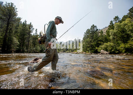 Fly fisherman fishing in Rocky Mountain National Park. - Stock Photo