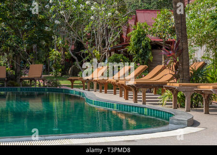 sun beds or sun loungers in a jungle setting next to a hotel swimming pool on koh phagnan, Thailand. - Stock Photo