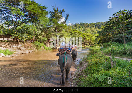 Chiang Mai, Thailand - November 21, 2015: Tourists in Chiang Mai ride on elephants by a river. - Stock Photo