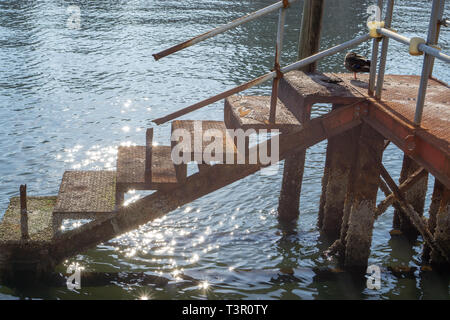 I found this old, rusty, mysterious stairway leading to the depth of Sumida river when I took my daily very early morning walk in Asakusa. - Stock Photo