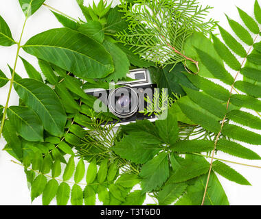 Vintage film camera in frame with green leaves - Stock Photo