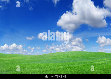 Idyllic landscape, view on green fields, blue sky and white clouds - Stock Photo