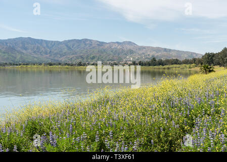 Beautiful Lake Elsinore vista in springtime, Southern California - Stock Photo
