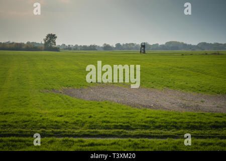 Hunting observation in green field, background agroculture - Stock Photo