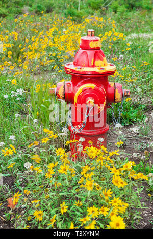 Red fire hydrant in field of flowers - Stock Photo