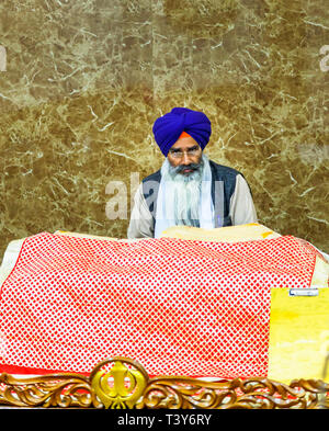 Middle aged devotee Sikh man with a long flowing white beard wearing a blue turban and glasses, Golden Temple of Amritsar, Amritsar, Punjab, India - Stock Photo