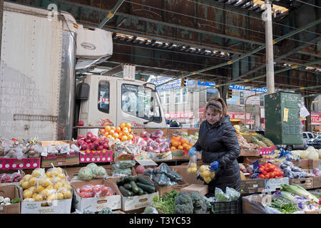 A Hispanic American woman puts out lemons at her fruit & vegetable stand on Roosevelt Ave & Warren Street in Corona, Queens, New York City. - Stock Photo