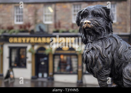 Scotland, Edinburgh, Greyfriars Bobby. Greyfriars Bobby, the famous loyal Skye Terrier who lay on the grave of his master John Gray for 14 years after - Stock Photo