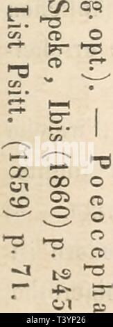 Archive image from page 520 of Die Papageien (1867) - Stock Photo