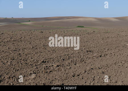 Agricultural land. Treated spacious field in the plane. Ploughing time. Spring. - Stock Photo