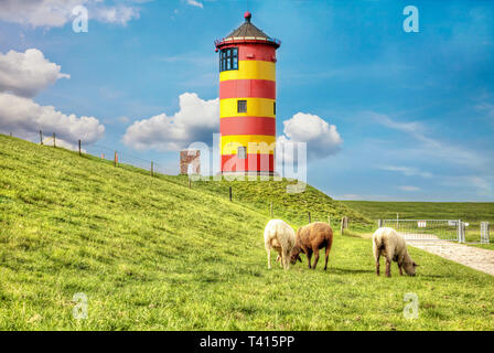 Sheep in front of the Pilsum lighthouse on the North Sea coast of Germany. - Stock Photo