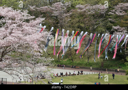 Yokohama, Japan. 12th Apr, 2019. Colorful carp streamers swin in the sky while cherry trees bloom at the Kodomonokuni park in Yokohama, suburban Tokyo on Friday, April 12, 2019. Koinobori or carp streamers are displayed for May 5 boy's festival in Japan, that reflect the parents' wishes for boy to grow up as strong as the carp. Credit: Yoshio Tsunoda/AFLO/Alamy Live News - Stock Photo