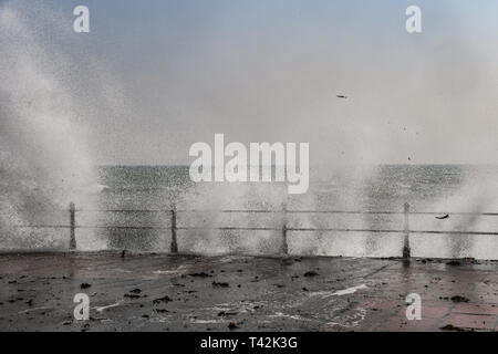 Penzance, Cornwall, UK. 13th Apr, 2019. UK Weather. Despite the sunshine it felt cold on the sea front at Penzance, as the 50mph wind pushed waves over the promenade on the seafront. Credit: Simon Maycock/Alamy Live News - Stock Photo