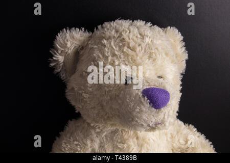 White custom hand made Teddy Bear with purple nose on dark background - Stock Photo