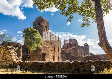 Fasil Ghebbi (Royal Enclosure) with trees, Gondar - Stock Photo