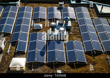 Solar systems, photovoltaic modules, on a flat roof, solar energy, - Stock Photo