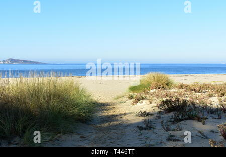 Beach with vegetation in sand dunes and morning light. Sunny day, blue sky, Galicia, Spain. - Stock Photo