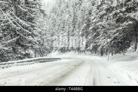 Forest road covered with snow during blizzard snowstorm, trees on both sides. Dangerous driving conditions in winter - Stock Photo