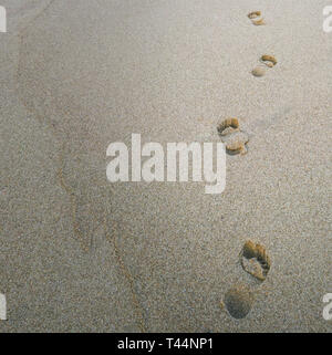 Beach sand footprints with copy space. Vacation or business concept - Stock Photo
