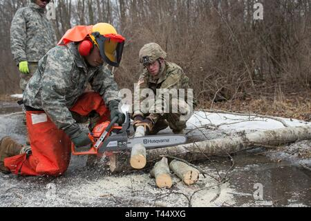 Spc. Kevin Morales assigned to Delta Company, 427th Brigade Support Battalion, 2nd Squadron, 101st Cavalry Regiment, New York Army National Guard, Buffalo cuts into a log with a chainsaw, while Spc. Ethan Brown assigned to Bravo Troop, 2nd Squadron, 101st Cavalry Regiment, assists him during training at Youngstown Local Training Area, Feb. 24, 2019. The training team was composed of New York Army National Guard and New York Guard Soldiers. They trained on how to use the equipment properly and safely. These Soldiers are just a few of more than 250 Soldiers and Airmen that are deployed to Wester - Stock Photo