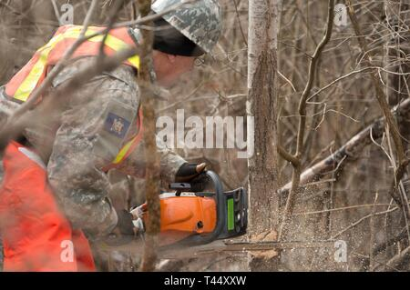 Sgt. Jerry Silvis assigned to the 65th Detachment, 10th Area Command, New York Guard, Buffalo, cuts into a tree with a chainsaw at Youngstown Local Training Area, Feb. 24, 2019. The training team was composed of New York Army National Guard and New York Guard Soldiers. They trained on how to use the equipment properly and safely. These Soldiers are just a few of more than 250 Soldiers and Airmen that are deployed to Western New York for debris clearing missions in support of Operation February Winter Storm. - Stock Photo