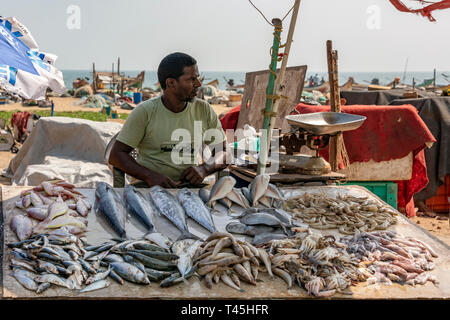 Horizontal portrait of a man selling fish at the Marina Beach fish market in Chennai, India. - Stock Photo
