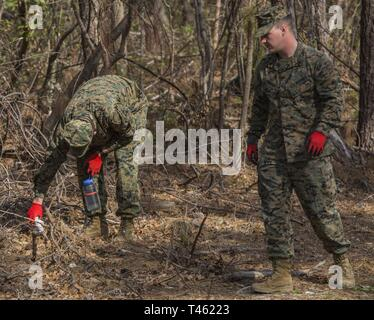 U.S. Marines with Combat Logistics Battalion 2, 2nd Marine Logistics Group, pick up trash during the monthly Single Marine Program base cleanup on Camp Lejeune, N.C., Feb. 28, 2019. The Marines volunteered their time to create a cleaner environment for service members and their families. - Stock Photo