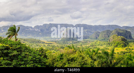 Green caribbean valley with small cuban houses and mogotes hills landscape panorama, Vinales, Pinar Del Rio, Cuba - Stock Photo