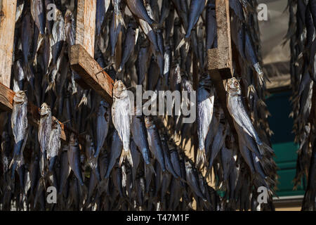 Traditional dried shad (sardina essiccata), Monte Isola, Lake Iseo, Lombardy, Italy - Stock Photo