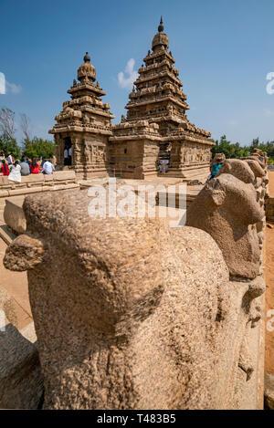 Vertical view of the Shore temple at Mahabalipuram, India. - Stock Photo