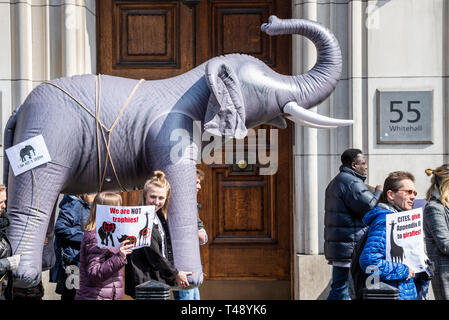 Protesters carry an inflatable elephant through streets of london at a stop trophy hunting and ivory trade protest rally, London, UK. DIT 55 Whitehall - Stock Photo
