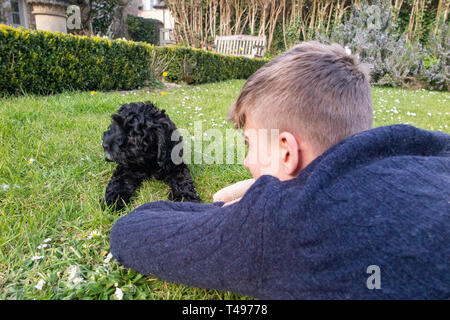 A teenaged boy plays with his puppy in the garden - Stock Photo