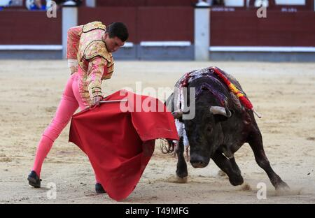 Madrid, Spain. 14th Apr, 2019. Spanish bullfighter Octavio Chacon fights his first bull during a bullfighting event at Las Ventas bullring in Madrid, Spain, 14 April, on occasion of the Palm Sunday celebration marking the beginning of the Holy Week in Spain. Credit: Fernando Alvarado/EFE/Alamy Live News - Stock Photo