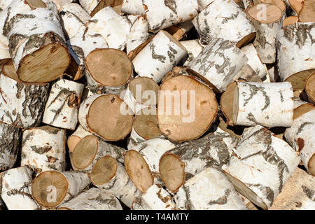 Big pile of birch logs sawn in the background - Stock Photo