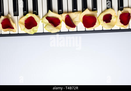 Piano keys with red and white rose flower petals, isolated, top view, copy space. Romantic concept. Piano or synthesizer keyboard. Classical music ins